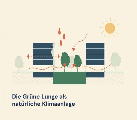 Waldrebengasse_360Grundrissmodul_GrueneLunge